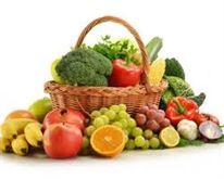 Piante grasse e frutti dell'orto